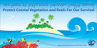coastal vegetation